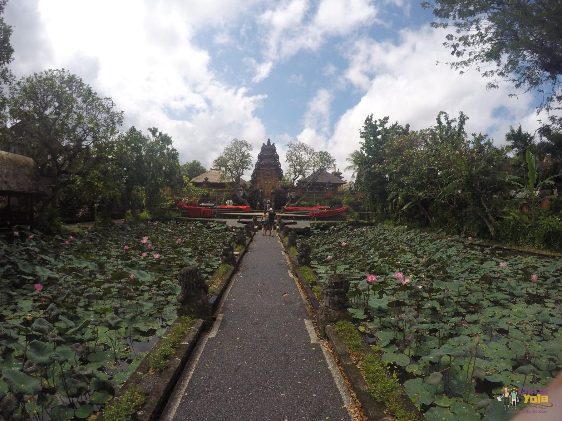 lotus saraswati bali