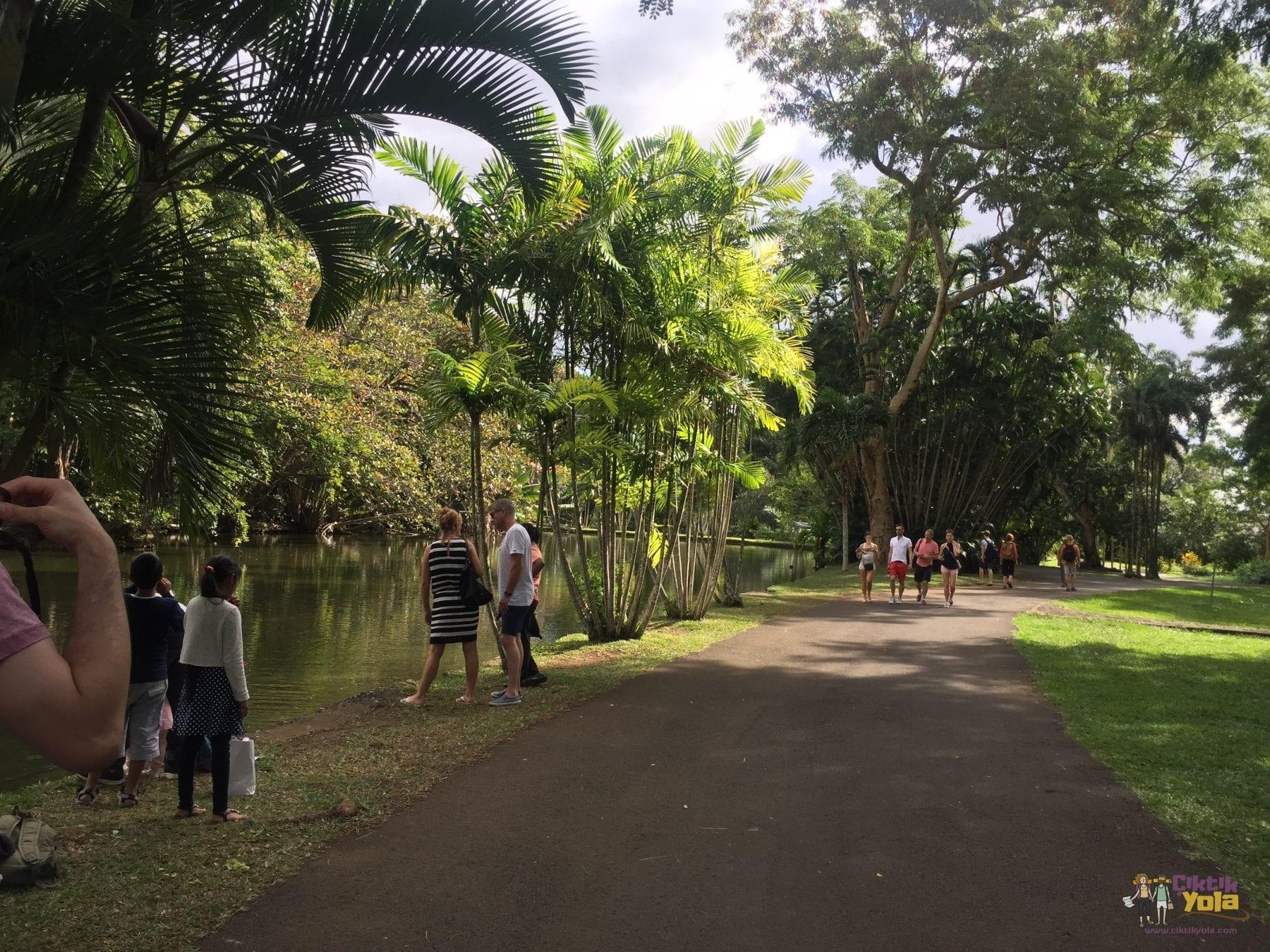 botanik park mauritius