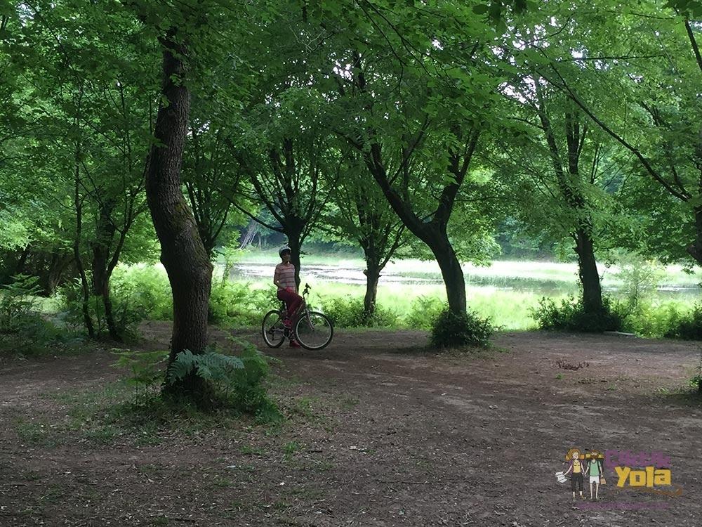 Bisiklet Orman