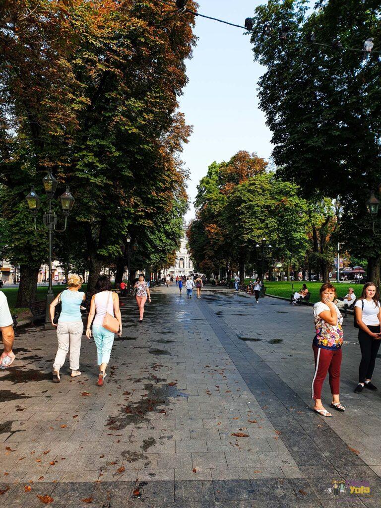 Lviv Park